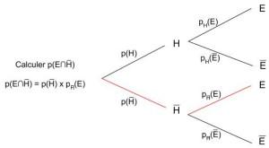 Arbre - Probabilité conditionnelle 1