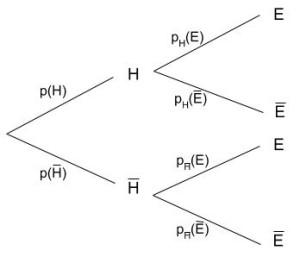 Arbre - Probabilité conditionnelle